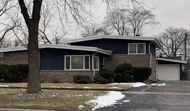 310 Ashland Avenue, Chicago Heights, IL 60411 (MLS #11005532) :: The Dena Furlow Team - Keller Williams Realty
