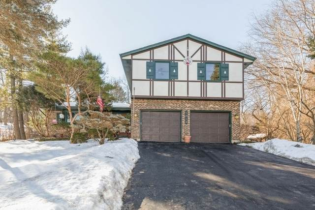 1215 Surrey Lane, Algonquin, IL 60102 (MLS #11005726) :: Ani Real Estate