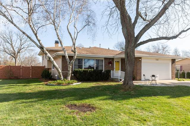 1031 Martingale Drive, Bartlett, IL 60103 (MLS #11006086) :: Ani Real Estate