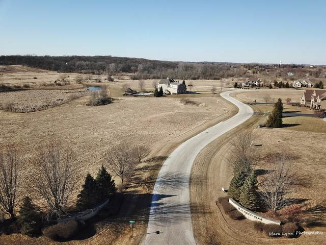 Lot 11 Derek Drive, Elburn, IL 60119 (MLS #11006143) :: Ani Real Estate