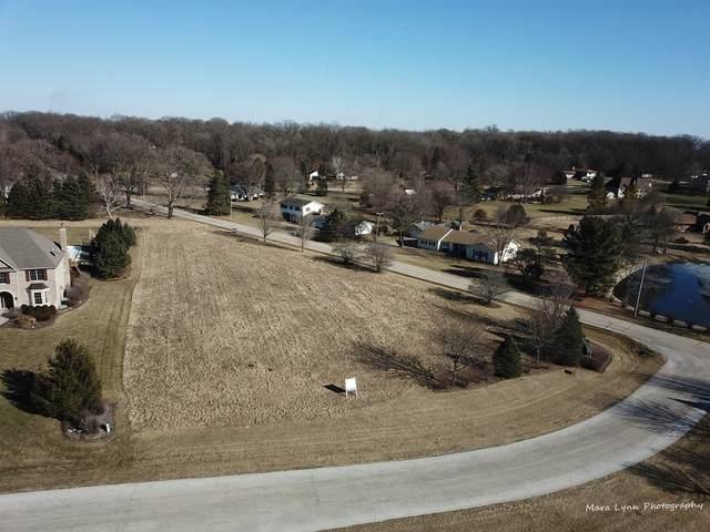 Lot 16 Derek Drive, Elburn, IL 60119 (MLS #11006146) :: Ani Real Estate