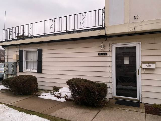 20126 Willow Drive #15, Lynwood, IL 60411 (MLS #11006166) :: Ani Real Estate