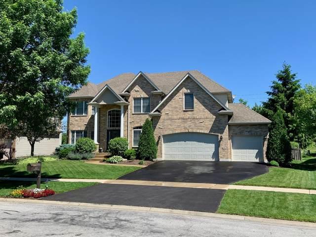 3219 Mistflower Lane, Naperville, IL 60564 (MLS #11006240) :: Helen Oliveri Real Estate