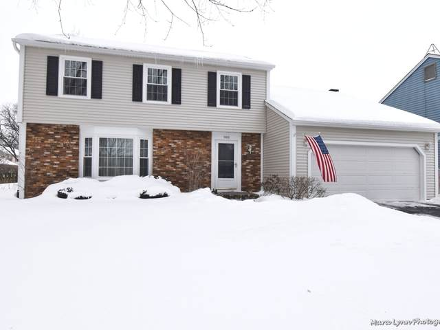 905 Independence Avenue, St. Charles, IL 60174 (MLS #11006446) :: The Spaniak Team