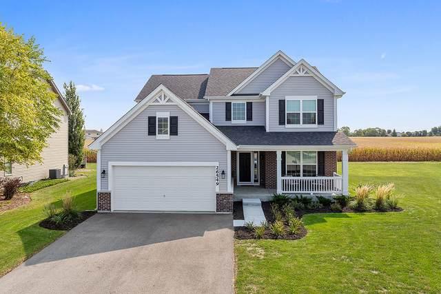 26549 W Old Stage Lane, Channahon, IL 60410 (MLS #11006966) :: John Lyons Real Estate
