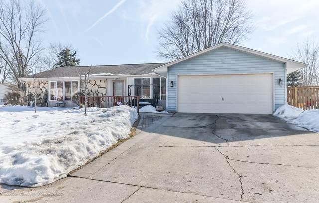 1231 Corley Drive, Elgin, IL 60120 (MLS #11006997) :: Ani Real Estate