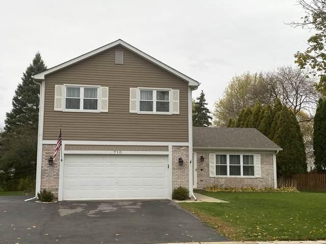 710 Lilac Drive, Algonquin, IL 60102 (MLS #11007079) :: Suburban Life Realty