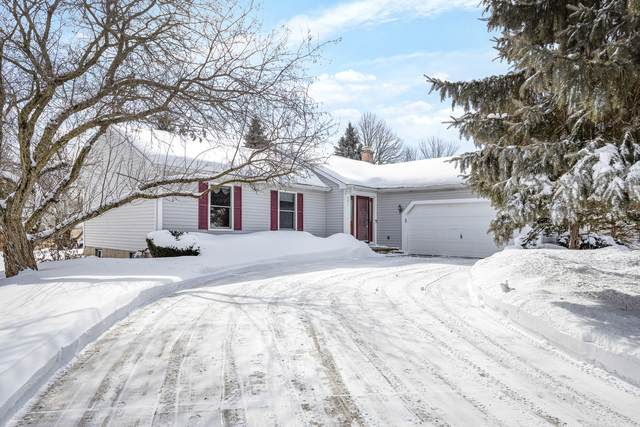 241 Valley Forge Avenue, South Elgin, IL 60177 (MLS #11007322) :: Suburban Life Realty