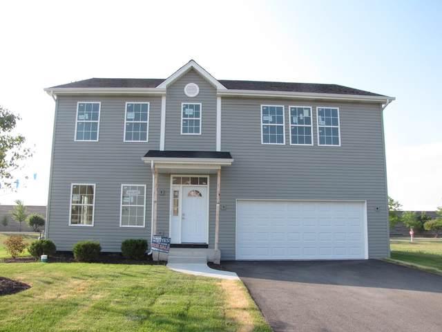 981 Amethyst Lane, Montgomery, IL 60538 (MLS #11007396) :: Ani Real Estate