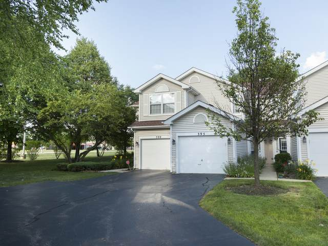 395 Hunterdon Court, Schaumburg, IL 60194 (MLS #11008569) :: The Spaniak Team