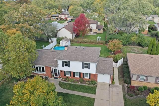 1460 E Dorothy Drive, Palatine, IL 60074 (MLS #11009317) :: BN Homes Group