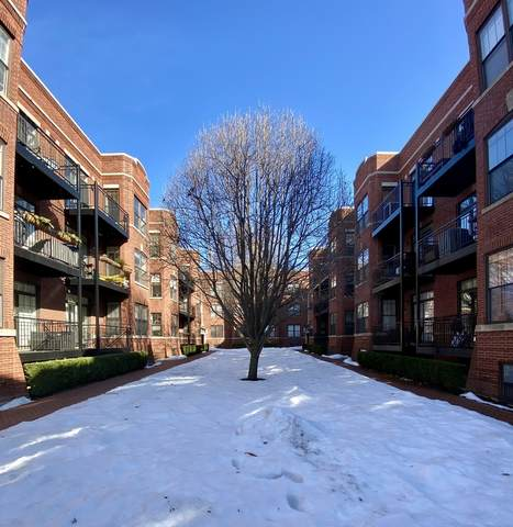 2705 N Mildred Avenue 3A, Chicago, IL 60614 (MLS #11009542) :: The Perotti Group