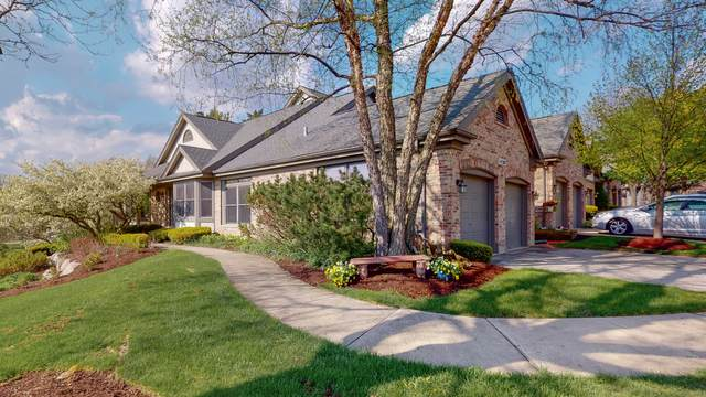 14301 Crystal Tree Drive, Orland Park, IL 60462 (MLS #11010228) :: BN Homes Group