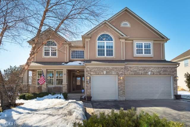 90 Glenbrook Circle, Gilberts, IL 60136 (MLS #11010413) :: Suburban Life Realty