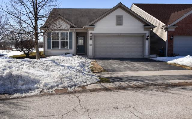 14229 Newport Circle, Huntley, IL 60142 (MLS #11010515) :: Ryan Dallas Real Estate