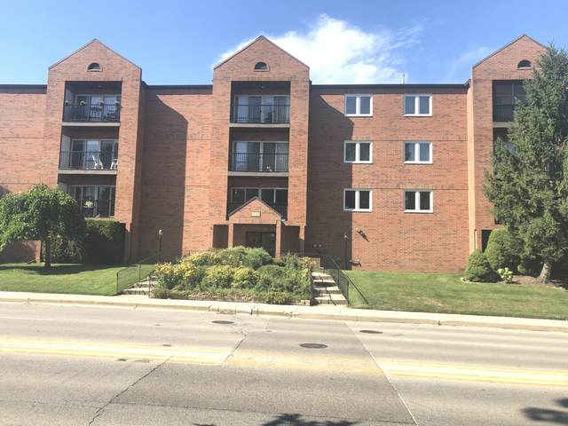 6550 W Gunnison Street #206, Harwood Heights, IL 60706 (MLS #11010640) :: The Dena Furlow Team - Keller Williams Realty