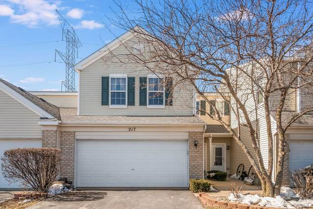 217 Parkside Drive #217, Shorewood, IL 60404 (MLS #11011014) :: The Dena Furlow Team - Keller Williams Realty