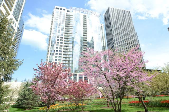 201 N Westshore Drive P92, Chicago, IL 60601 (MLS #11011125) :: The Perotti Group
