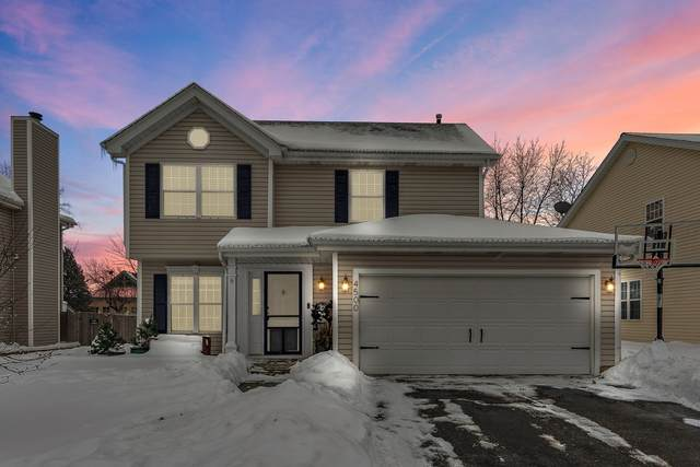 4500 W Ole Farm Road, Plainfield, IL 60586 (MLS #11011192) :: Ryan Dallas Real Estate
