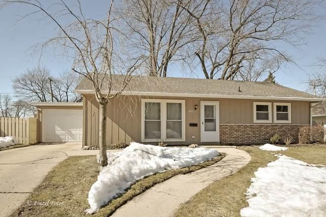 100 Birch Street, Carpentersville, IL 60110 (MLS #11011240) :: Suburban Life Realty