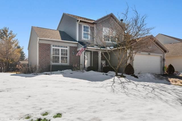 374 Mallard Lane, Sugar Grove, IL 60554 (MLS #11011381) :: The Dena Furlow Team - Keller Williams Realty