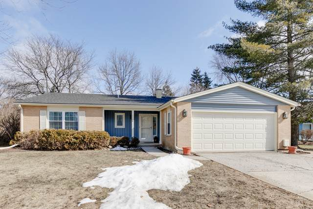 1146 Weeping Willow Lane, Libertyville, IL 60048 (MLS #11011447) :: The Dena Furlow Team - Keller Williams Realty