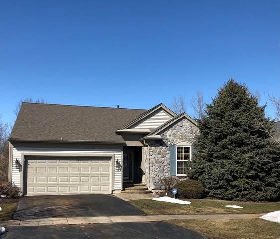11224 Greenway Drive, Huntley, IL 60142 (MLS #11011715) :: Ryan Dallas Real Estate