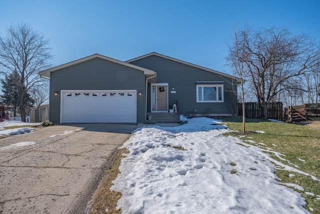 111 Saint George Lane, Oswego, IL 60543 (MLS #11011838) :: Helen Oliveri Real Estate