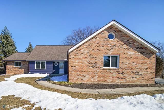 8527 Oriole Court, Orland Park, IL 60462 (MLS #11011871) :: Ryan Dallas Real Estate