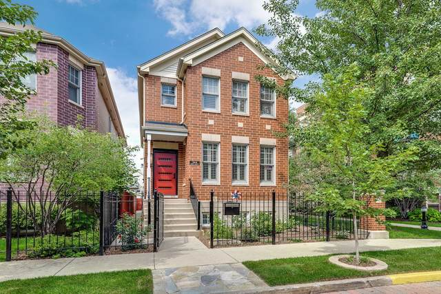 344 W Scott Street, Chicago, IL 60610 (MLS #11012369) :: The Perotti Group