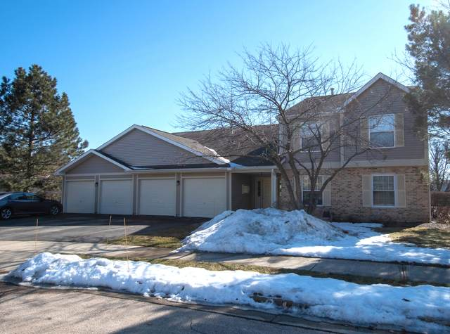 335 Buckingham Circle A, Elgin, IL 60120 (MLS #11012401) :: Suburban Life Realty