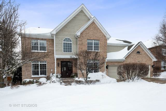 560 W Ruhl Road, Palatine, IL 60074 (MLS #11012634) :: Ryan Dallas Real Estate