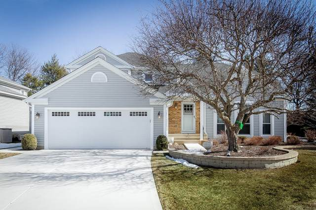 543 Rutgers Lane, Elk Grove Village, IL 60007 (MLS #11012706) :: BN Homes Group