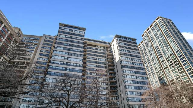 3440 N Lake Shore Drive 3A, Chicago, IL 60657 (MLS #11012961) :: The Perotti Group