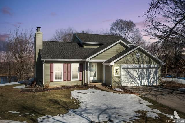 24 Huntington Court, Mundelein, IL 60060 (MLS #11013016) :: Helen Oliveri Real Estate