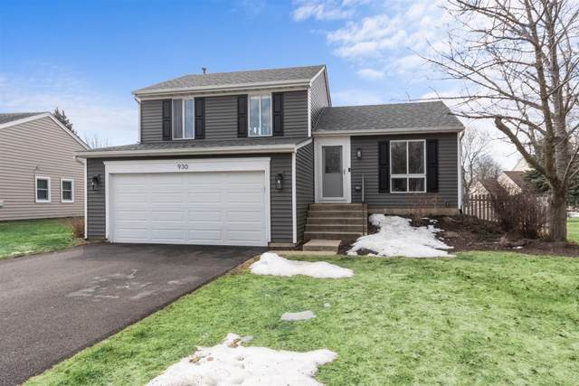 930 Division Street, Geneva, IL 60134 (MLS #11013310) :: Helen Oliveri Real Estate
