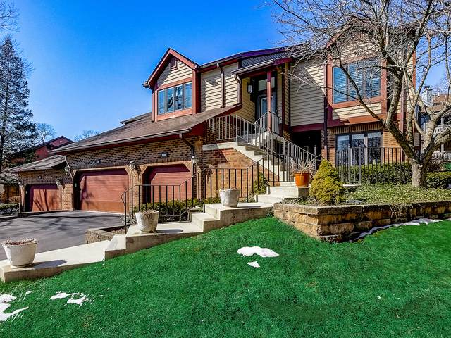 1048 Braemoor Drive, Downers Grove, IL 60515 (MLS #11013967) :: RE/MAX IMPACT