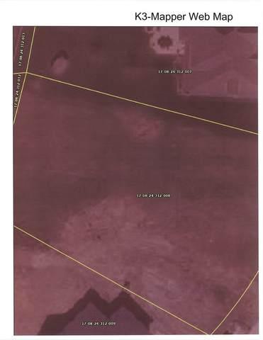 165 Barrington Lane, Bourbonnais, IL 60914 (MLS #11014035) :: The Wexler Group at Keller Williams Preferred Realty