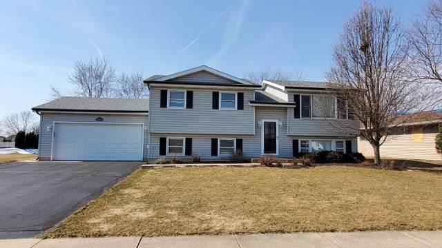 925 Lake Road, New Lenox, IL 60451 (MLS #11014247) :: Helen Oliveri Real Estate