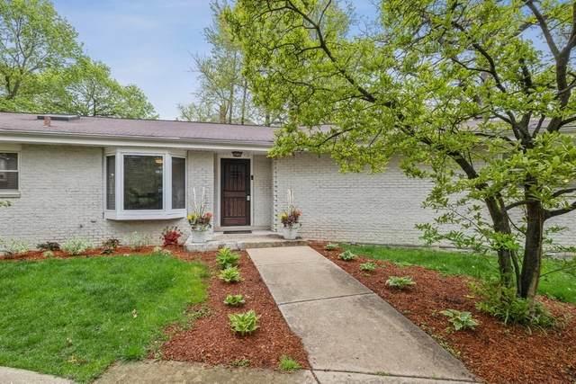 6506 Wolf Road, Indian Head Park, IL 60525 (MLS #11014493) :: Helen Oliveri Real Estate