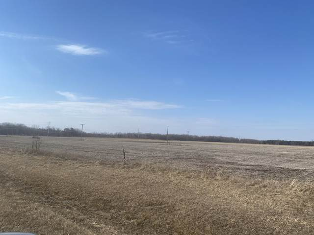 VACANT#19 County Line Road, Essex, IL 60935 (MLS #11015121) :: Carolyn and Hillary Homes