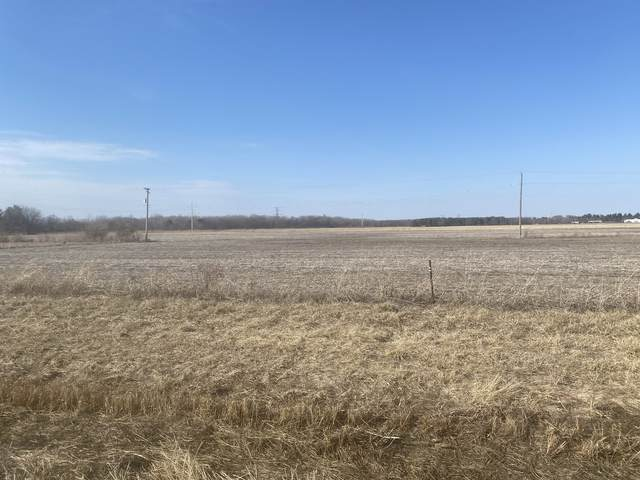 VACANT W County Line Road, Essex, IL 60935 (MLS #11015168) :: Carolyn and Hillary Homes