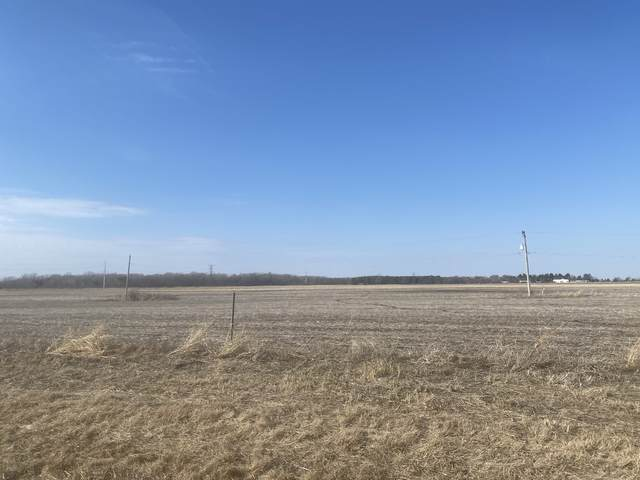 Vacant#11 County Line Road, Essex, IL 60935 (MLS #11015268) :: Carolyn and Hillary Homes