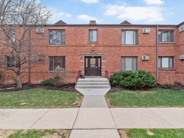 1540 Ashland Avenue 1B, River Forest, IL 60305 (MLS #11015377) :: Helen Oliveri Real Estate