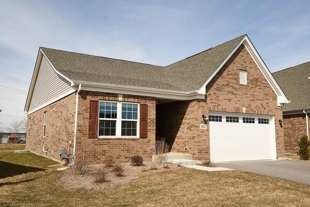 2007 Royalglen Drive, New Lenox, IL 60451 (MLS #11015954) :: Helen Oliveri Real Estate