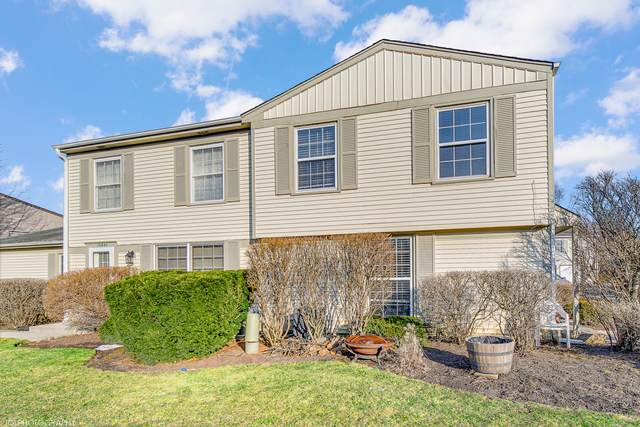 1684 Valley Forge Court B, Wheaton, IL 60189 (MLS #11016452) :: RE/MAX IMPACT