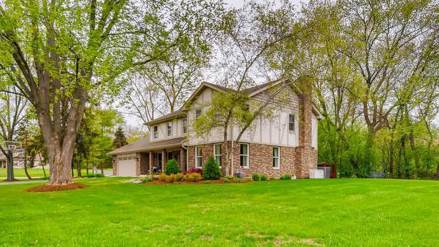 22280 W Little Pond Road, Kildeer, IL 60047 (MLS #11017664) :: Helen Oliveri Real Estate
