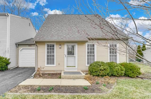 29W432 Butternut Lane, Warrenville, IL 60555 (MLS #11017904) :: RE/MAX IMPACT
