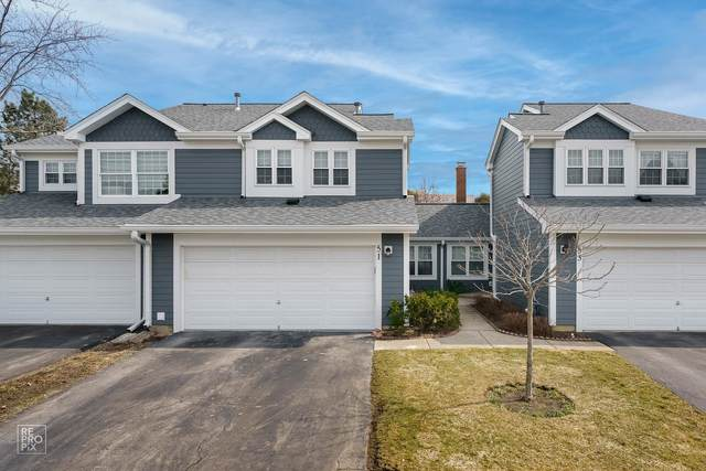 51 White Pine Drive, Schaumburg, IL 60193 (MLS #11018557) :: RE/MAX IMPACT