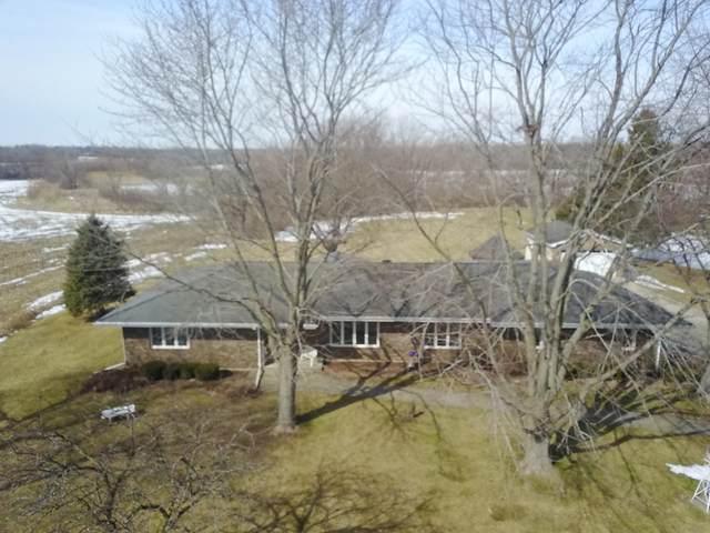 12N268 Jackson Drive, Elgin, IL 60124 (MLS #11018763) :: Helen Oliveri Real Estate